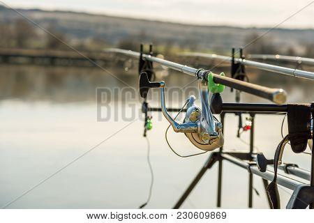 Carp Fishing Rods,fishing Rod, Fishing Line, Coil.