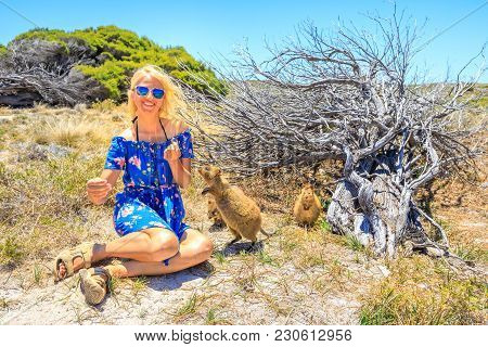 Smiling Blonde Caucasian Tourist Woman Interacts With Two Curious Quokka In The Wilderness Of Rottne