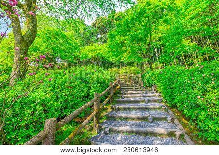 Tenryu-ji Temple Garden