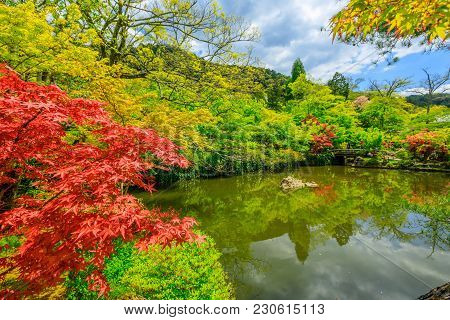 Gorukaku The Hojo-ike Pond In Eikan-do Spring Season. A Temple Famous For The Buddha. The Official N