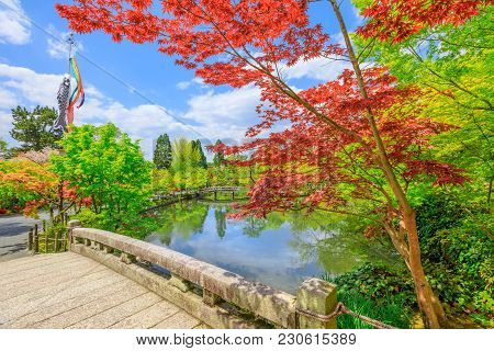Stone Bridge Across The Hojo-ike Pond Surrounded By Red Linden Trees. Eikan-do, The Official Name Is