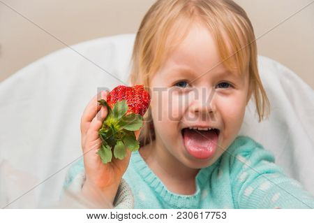 Little Girl In The Kitchen Eating A Huge Ripe Strawberry, Having Fun And Exulting
