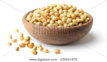 Dried Coriander Seeds In The Wooden Plate, Isolated On White Background