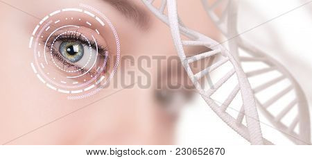 Abstract Eye With Digital Circle And Dna Chains. Futuristic Vision Science And Identification Concep