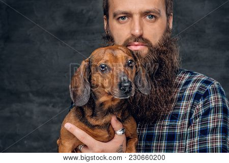 Close Up Studio Portrait Of Cute Brown Badger Dog And His Bearded Man Friend.