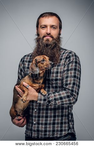 Urban Bearded Male Dressed In A Plaid Shirt Holds A Cute Badger Dog.