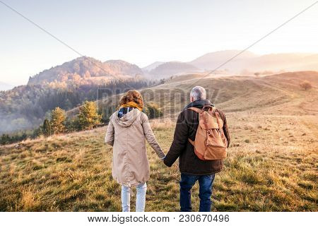 Active Senior Couple On A Walk In A Beautiful Autumn Nature, Holding Hands. Rear View.