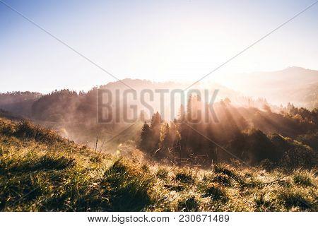 Sunrise In A Beautiful Autumn Nature. Grassland In The Morning.