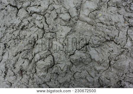 The Texture Of Wet Mud, Ground Structure Is Rich In Various Minerals For Plant (clay Background)