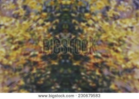 Blurred Colored Background. Abstract Background.abstract Colored Background. Blur Image Of Colored L