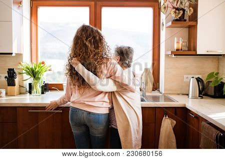 A Teenage Girl With Grandmother At Home, Hugging. Family And Generations Concept. Rear View.