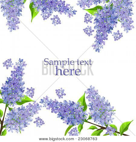 Beautiful background with blossoming branch of lilac