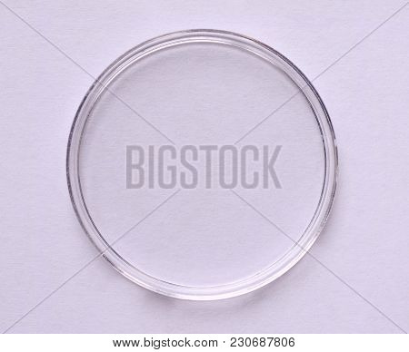 A Petri Dish (aka Petrie Dish Or Petri Plate Or Cell Culture Dish) Cylindrical Glass Or Plastic Lidd