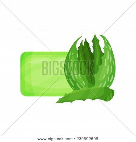 Bar Of Hygienic Soap And Bright Green Leaves Of Aloe. Item For Face And Body Cleaning. Natural Cosme