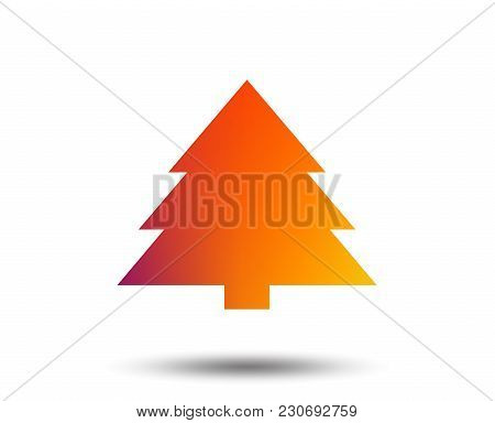 Christmas Tree Sign Icon. Holidays Button. Blurred Gradient Design Element. Vivid Graphic Flat Icon.