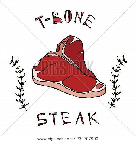 T-bone Steak Beef Cut With Lettering In S Thyme Herb Frame. Meat Guide For Butcher Shop Or Steak Hou