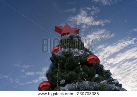 Christmas Tree Public Season Sky Sparkling Spirit Star
