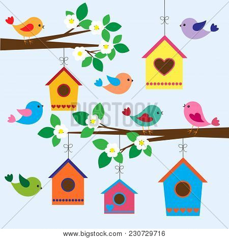 Colorful Birds And Birdhouses In Spring.vector Illustration,vector Card