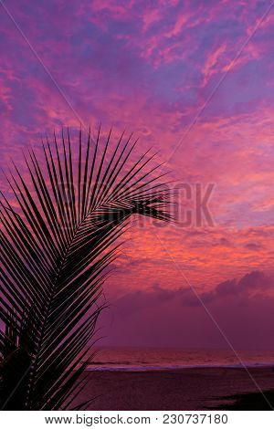 Evening Sky With Dramatic Sunset Clouds And Amazing Sunlight Over Tree Silhouette On Twilight Sky