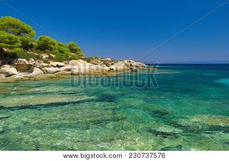 Sunny sea coast at summer