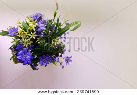 1.A Small Neat Bouquet Of Primroses With Blue And Yellow Spring Flowers On A White Background