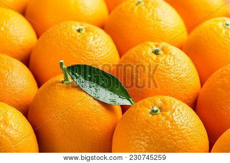 Orange Fruits With Green Leaf With Drops.  Short Depth Of Field, With Focus On The Green Leaf. Orang