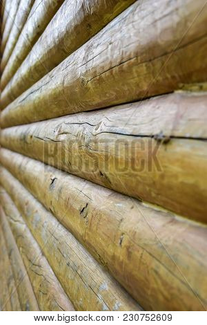 Natural Background Pattern Of A Log Wall Close Up. Pine Log Texture.