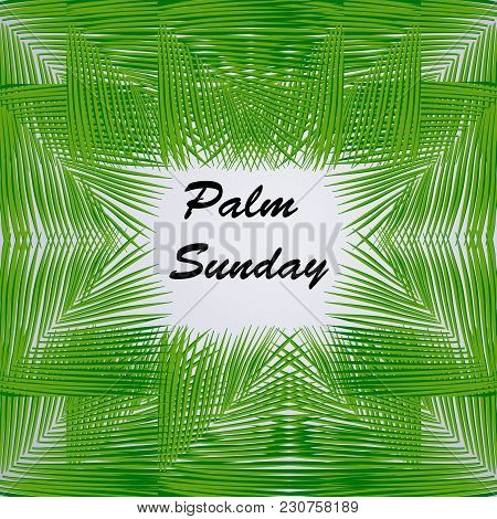 Illustration Of Palm Sunday Text On Palm Leaves Background On The Occasion Of Christian Moveable Fea