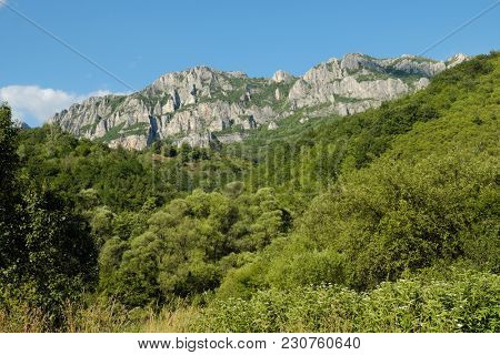 lush vegetation and Vlaska Mountain on Jerma Canyon, Serbia