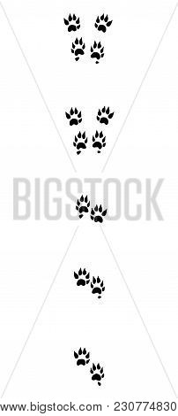 Marten Tracks. Typical Footprints With Long Claws - Isolated Black Icon Vector Illustration On White