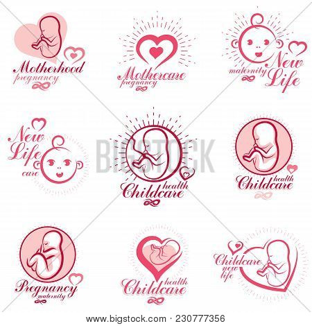 Vector Embryo And Newborn Emblems Collection. New Life Beginning Drawings. Gynecology And Pregnancy