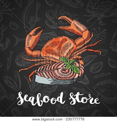 Vector Hand Drawn Colored Seafood Elements Composition On Dark Gradient Background With Lettering Fo