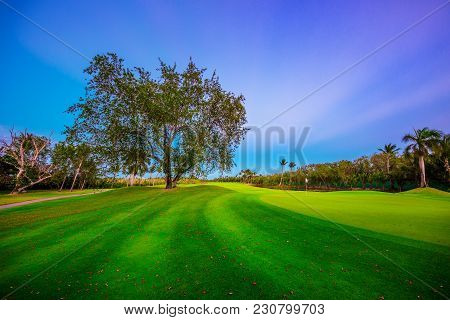 Golf Course With Tropical Palm Trees And Lake In Punta Cana. Dominican Republic.