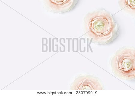 Styled Stock Photo. Feminine Desktop Mockup With Blush Pink Buttercup Flowers, Ranunculus, On White