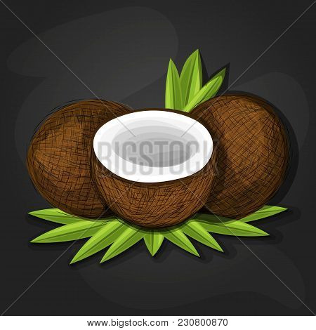 Coconuts With Various Coconut Dish Ideas And Benefits Such As Pina Colada Cocktail, Coconut Cake, Co