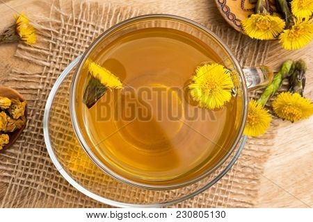 Fresh Coltsfoot (tussilago Farfara) Flowers With Coltsfoot Tea, Top View