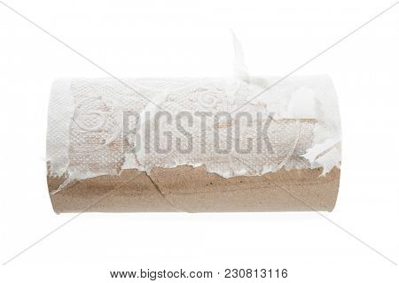 Empty toilet paper roll without paper isolated on white background.