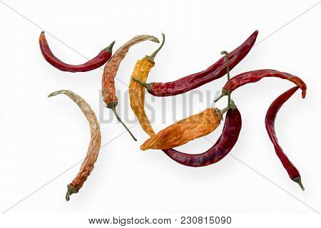 The Chilli Pepper - Sun-dried Is On White Background