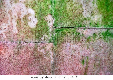 Background Old Wall Plates With Pink Marble Texture Covered Green Mold And Moss.