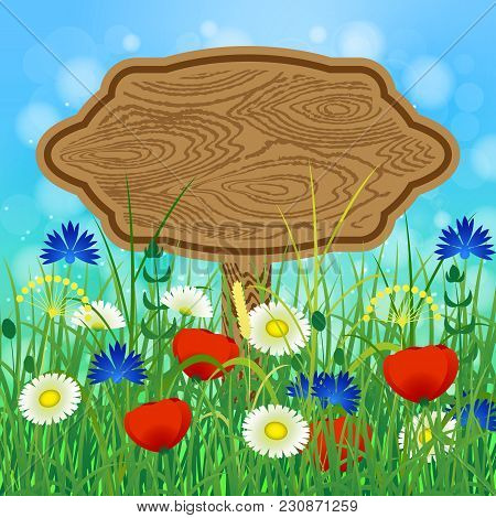 Concept Summer. Sky, Blur, Meadow With Herbs And Flowers. Wooden Billboard For Text