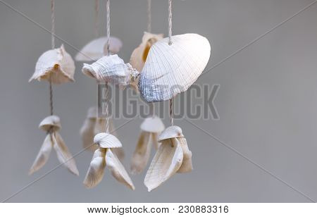Seashells Hanging On White Background. Seashell Mobile Is Handicrafts Produced By Handmade. With Cop