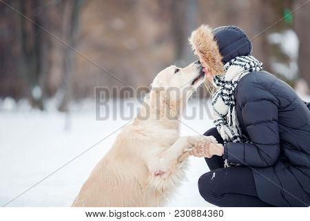 Picture Of Girl Hugging Labrador In Snowy Park At Afternoon