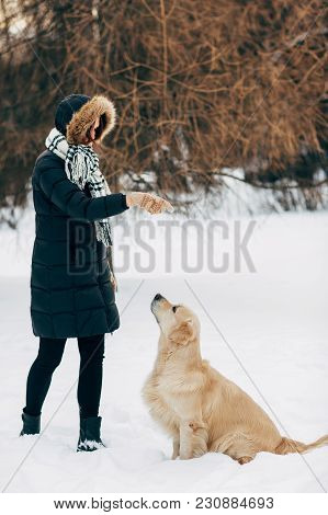Photo Of Girl With Labrador On Walk In Winter Park During Day