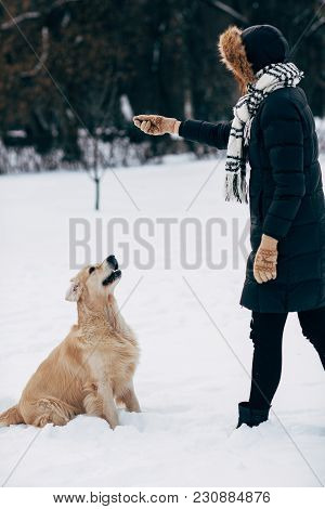 Picture Of Woman Playing With Dog In Winter Park During Day