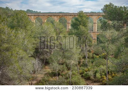 The Ferreres Aqueduct In The Forest