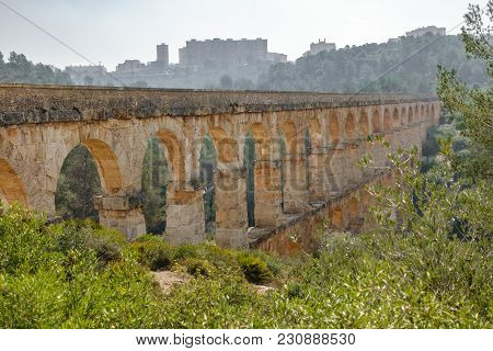 The Ferreres Aqueduct Profile In The Forest