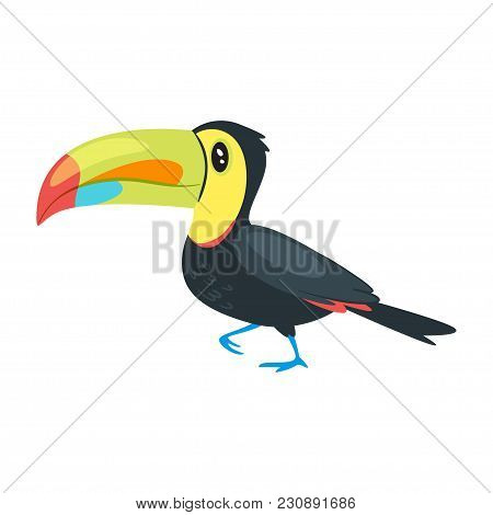 Vector Cartoon Style Illustration Of Zoo Animal - Toucan. Isolated On White Background.