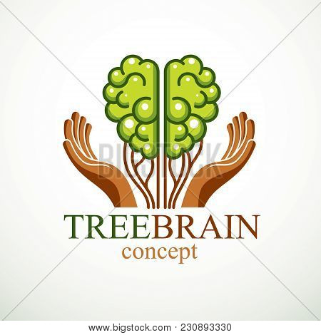 Tree Brain Concept, The Wisdom Of Nature, Intelligent Evolution. Human Anatomical Brain In A Shape O