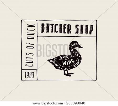 Stock Vector Duck Diagram In The Style Of Handmade Graphics. Label Template For Butcher Shop. Black