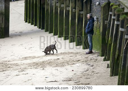 London, England - March 12, 2017 A Man Is Listening To Music On Headphones. The Dog Rushes Along The